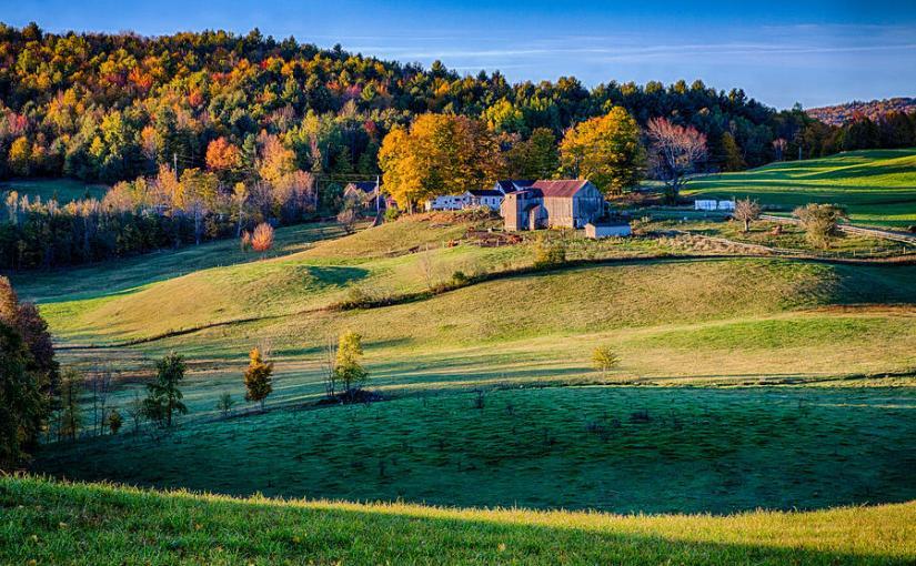 Far Farm